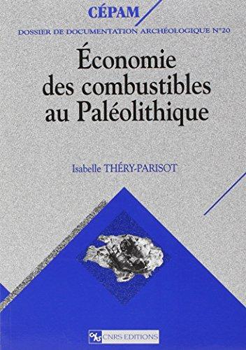 9782271059352: Économie des combustibles au Paléolithique : Expérimentation, taphonomie, anthracologie