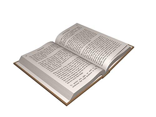 9782277223160: La Liste de Schindler