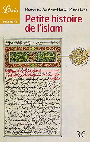Petite histoire de l'islam: Amir-Moezzi, Mohammad-Ali, Lory,