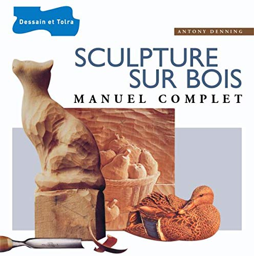 9782295001221: Sculpture sur bois : Manuel complet