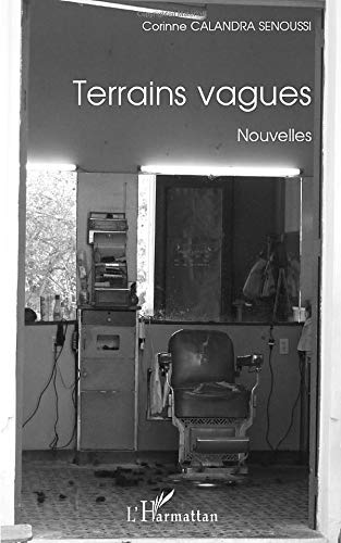 9782296133501: Terrains Vagues Nouvelles (French Edition)