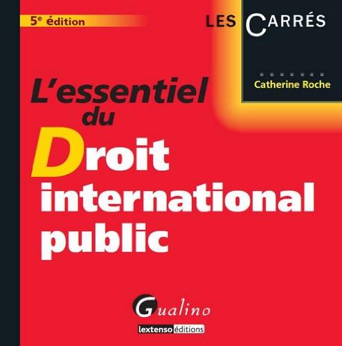 9782297025263: L'essentiel du droit international public