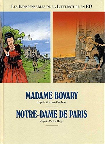 9782298089868: Les incontournables de la littérature en BD, en 2 vol. Madame de Bovary / Notre-Dame de Paris