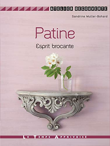 9782299002811: PATINE ESPRIT BROCANTE