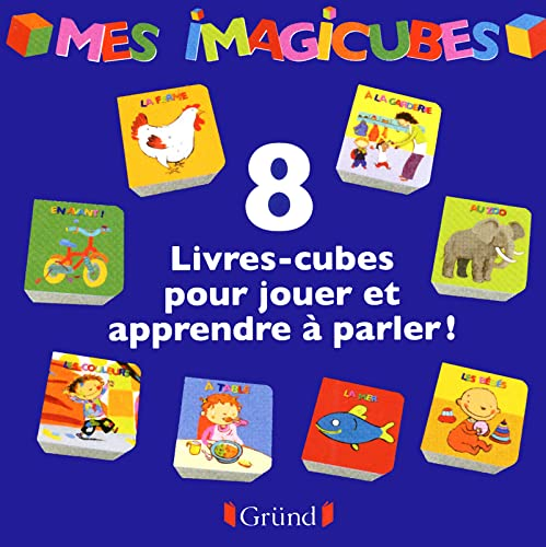 9782324000812: Mes imagicubes (French Edition)