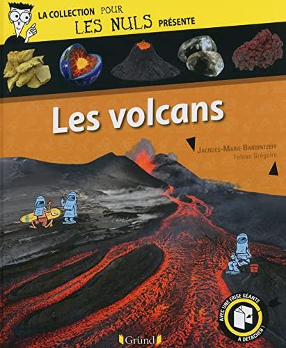 9782324006890: Pour Les Nuls présente Les volcans