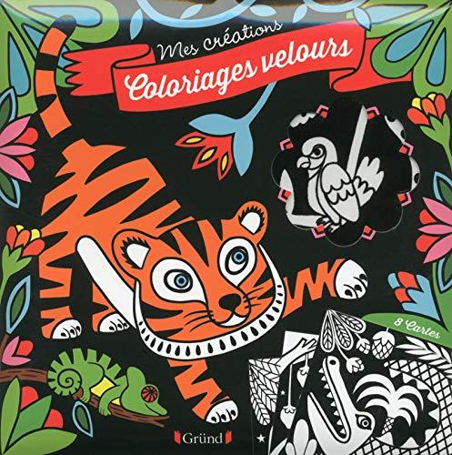 9782324012358: Coloriages velours (Mes créations)
