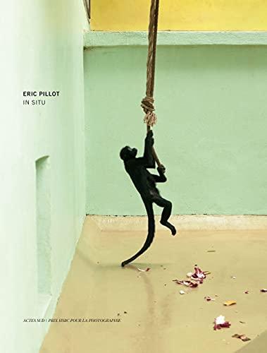 IN SITU - PRIX HSBC 2012: PILLOT ERIC