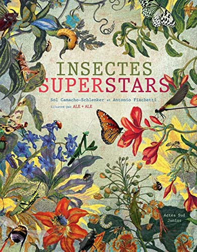 INSECTES SUPERSTARS: CAMACHO-SCHLENK SOL