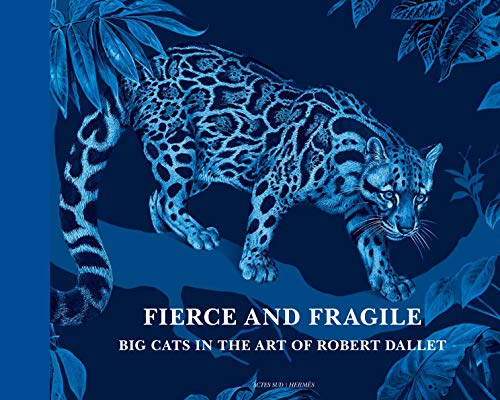 9782330057602: Fierce and Fragile, Big Cats in the Art of Robert Dallet