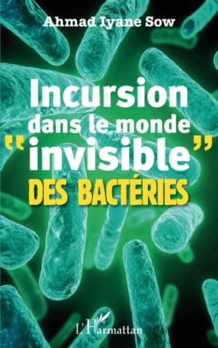9782336304397: Incursion dans le monde invisible