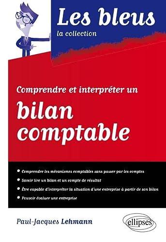 9782340003491: Comprendre et Interpréter un Bilan Comptable