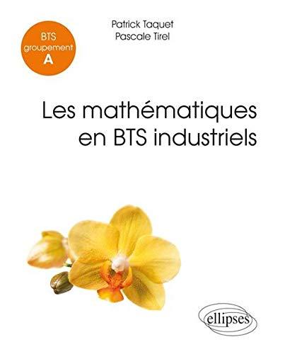 9782340005259: Les Mathématiques en BTS Industriels Groupement A