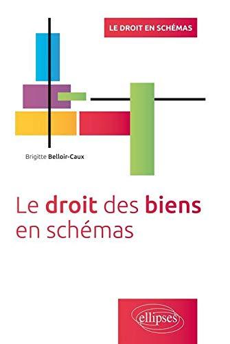 9782340005723: Le Droit des Biens en Sch�mas