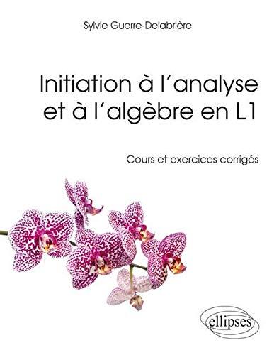 9782340006591: Initiation A L'Analyse Et A L'Algebre En L1 Cours Et Exercices Corriges