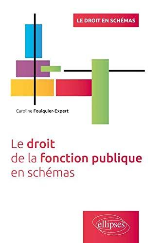 9782340007055: Le Droit de la Fonction Publique en Schémas