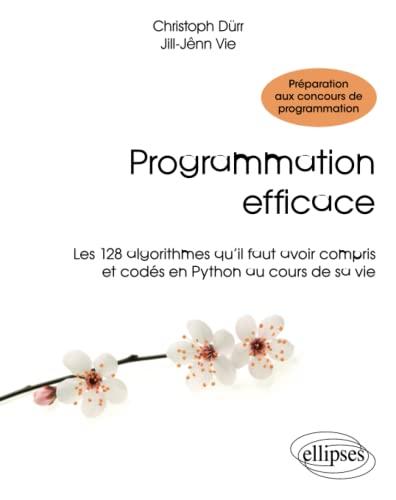 9782340010055: Programmation Efficace Les 128 Algorithmes Qu'Il Faut Avoir Compris et Codés en Python au Cours de sa Vie