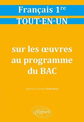9782340031425: Tout-en-un sur les oeuvres au programme de français