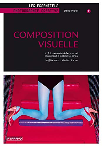 9782350173122: Composition visuelle