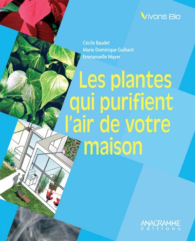 9782350350943: Les plantes qui purifient l'air de votre maison (French Edition)