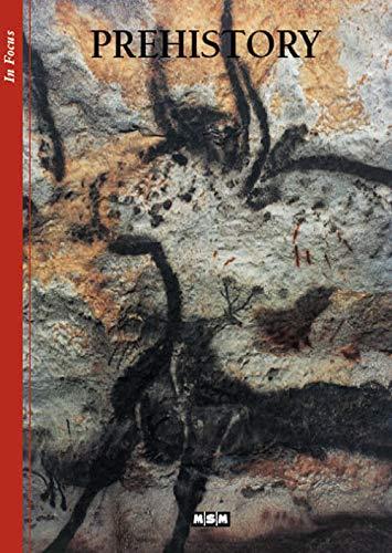 9782350800363: La prehistoire (ang)-arrets/images