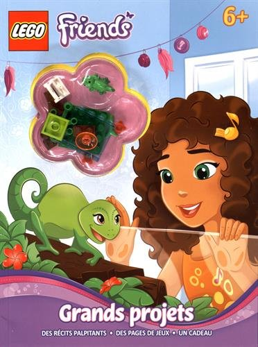 LEGO FRIENDS : GRANDS PROJETS: COLLECTIF