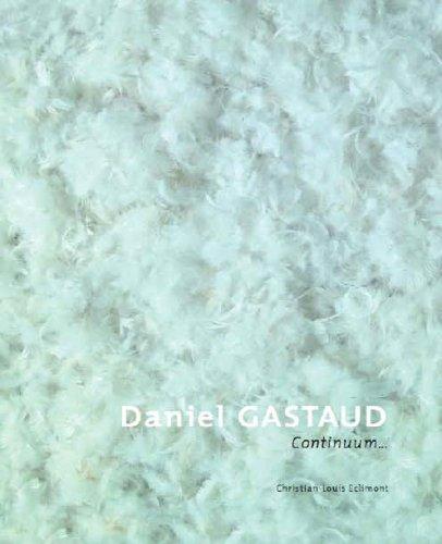 9782351080252: Daniel Gastaud, Continuum (French Edition)