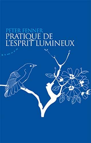 PRATIQUE DE L ESPRIT LUMINEUX: FENNER PETER