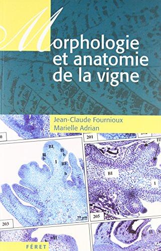 9782351560839: Morphologie et anatomie de la vigne