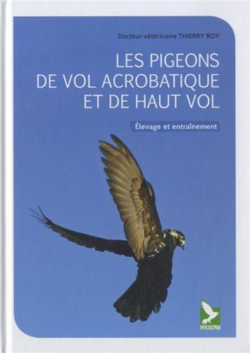 Les pigeons de vol acrobatique et de haut vol: Thierry Roy