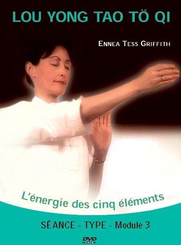 9782351950296: DVD Type Qi Gong Tib�tain (Lou Yong Tao T� Qi) - Vol 3 : S�ance Type L'Energie de la Gu�rison