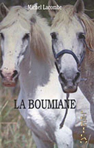 9782353030484: La boumiane