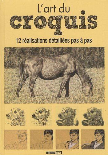 9782353552771: L'art du croquis (1DVD) (French Edition)