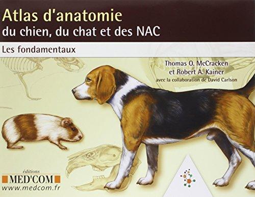 9782354030582: Atlas d'anatomie du chien, du chat et des NAC (French Edition)