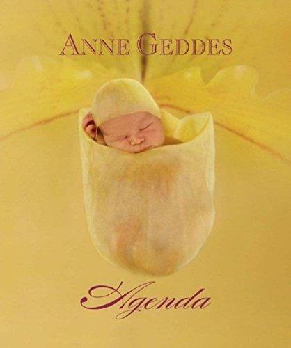 9782354250898: Agenda Perpetuel Fleurs a.Geddes (Grd Fo