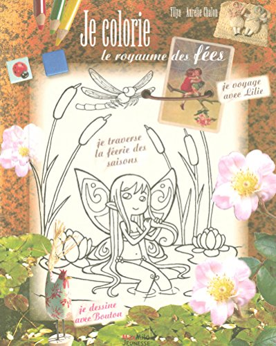 9782354380007: Je colorie le royaume des fees (French Edition)