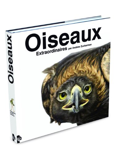 9782355370335: Oiseaux extraordinaires