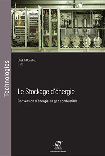 9782356712042: Le stockage d'�nergie : Conversion d'�nergie en gaz combustible