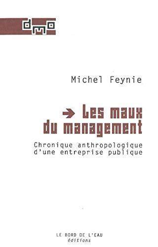 Les maux du management Chronique anthropologique d'une entreprise: Feynie Michel