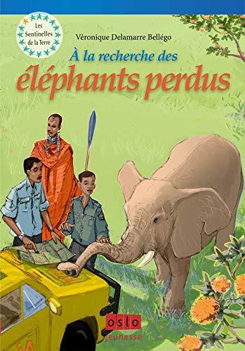 9782357540606: Les Sentinelles de la Terre, Tome 2 (French Edition)