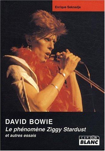 David Bowie Le phenomene Ziggy Stardust : et autres essais: Seknadje Enrique