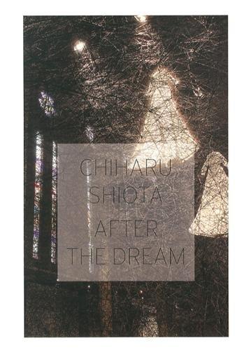 9782359061000: Chiharu Shiota : After the Dream, 2013