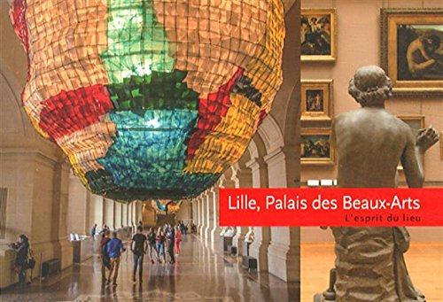 9782359881158: Lille, Palais des Beaux-Arts