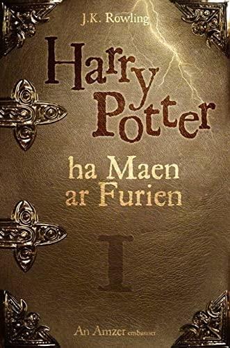 9782363120083: Harry Poter ha maen ar furien