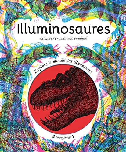9782408020477: Illuminosaures