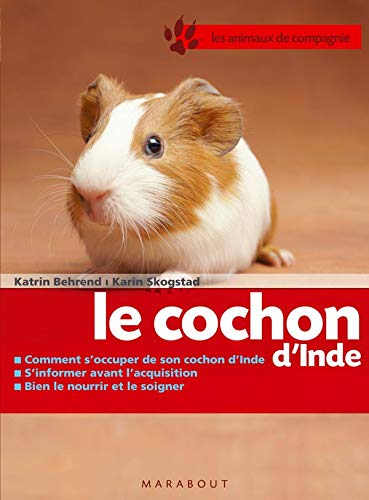 9782501051187: Le cochon d'Inde (French Edition)