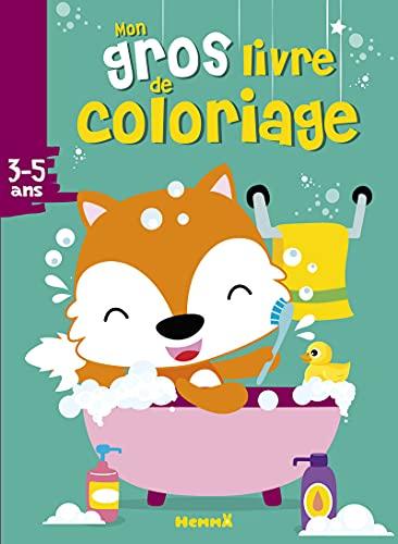 9782508045110: Mon gros livre de coloriage (Renard)