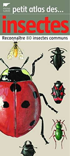 9782603014394: Petit atlas des insectes (French Edition)