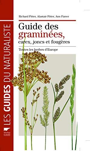 Guide des graminées, carex, joncs, et fougères (French Edition): Richard ...