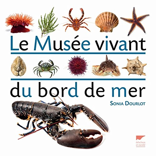 Musée vivant du bord de mer (Le): Sonia, Dourlot